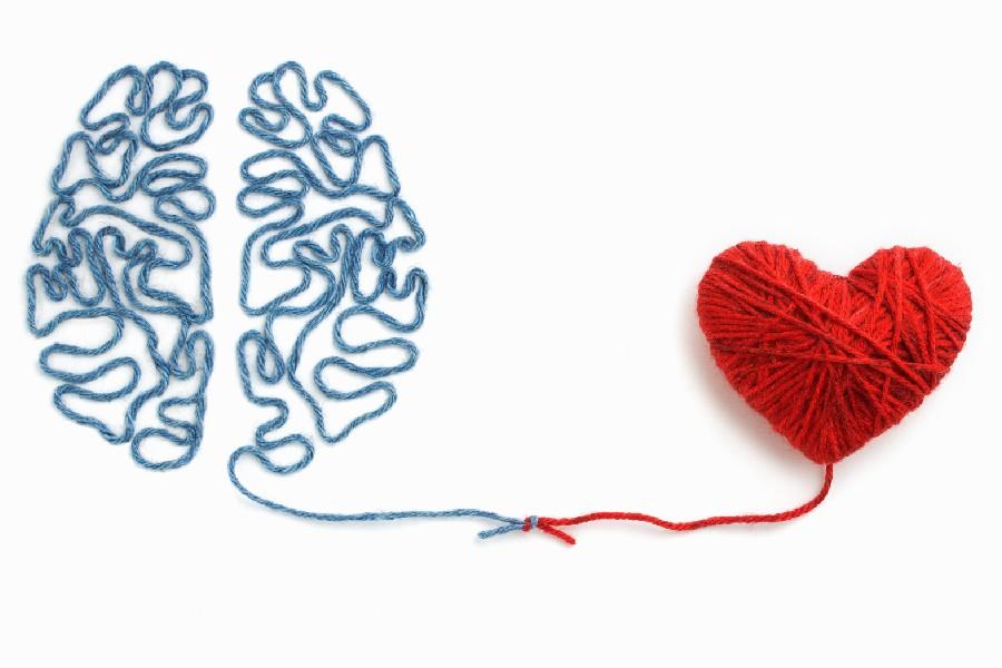 Come scegliere l'università: cervello e cuore di filo di cotone legati insieme