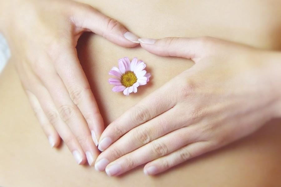 mani di donna formano un cuore sul ventre su cui poggia una margherita