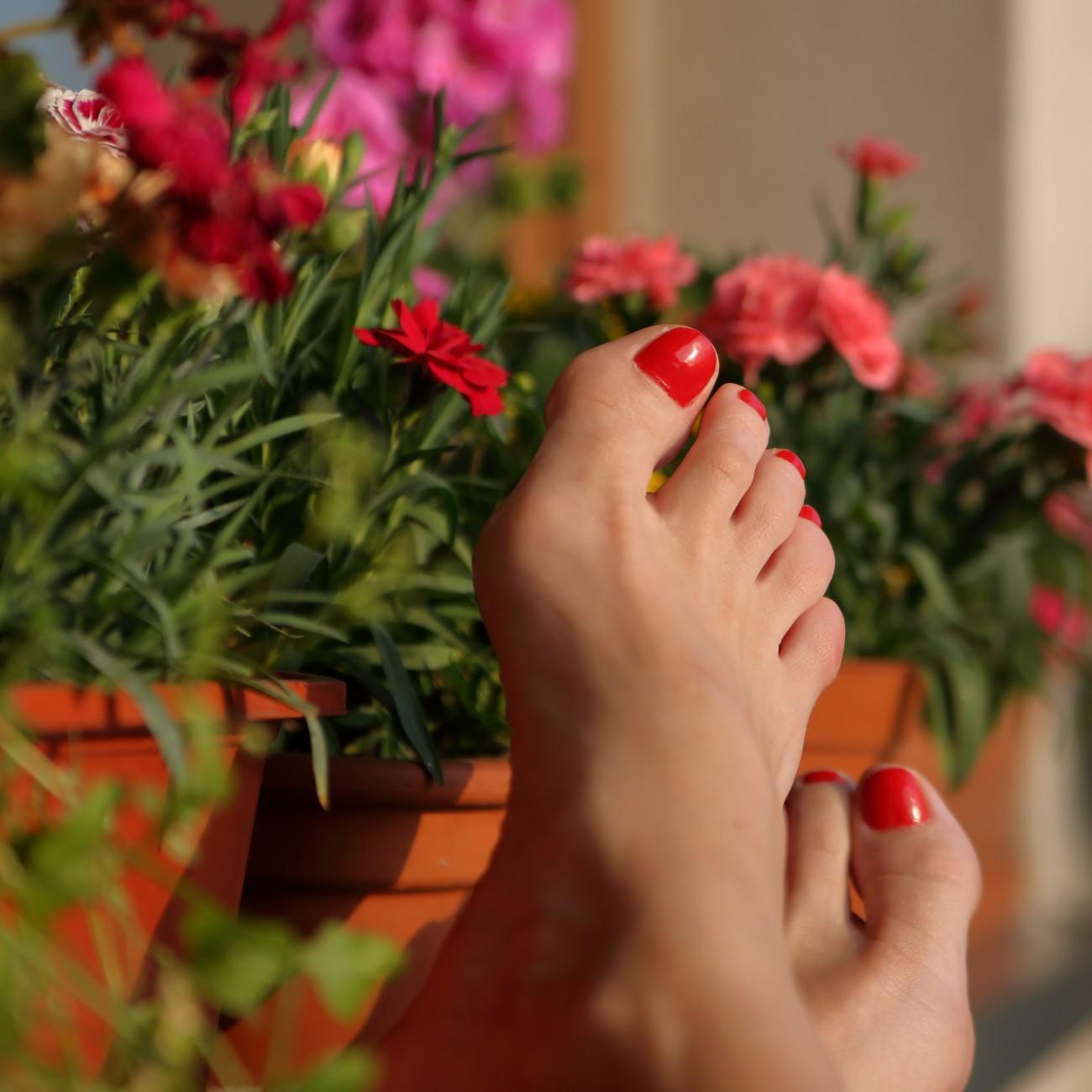 Single e felice: nell'immagine piedi femminili con smalto rosso