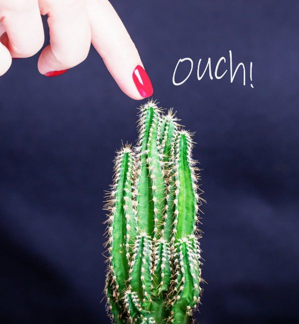 Una donna tocca un cactus