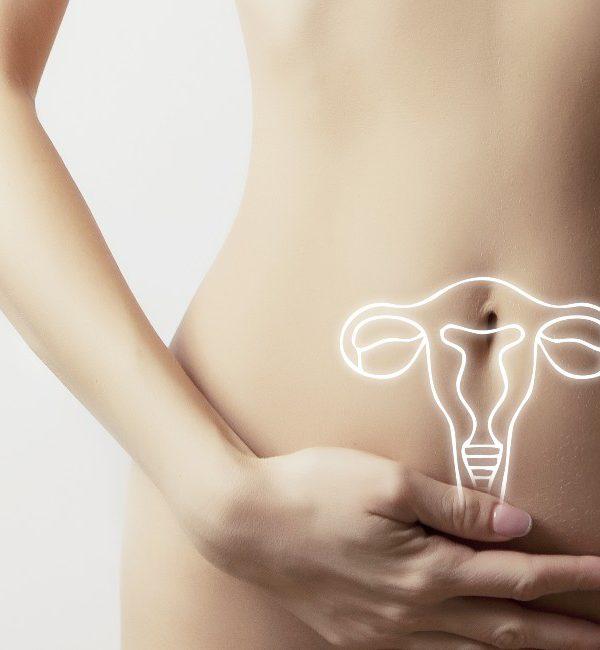 disegno dell'apparato riproduttivo femminile su ventre di donna