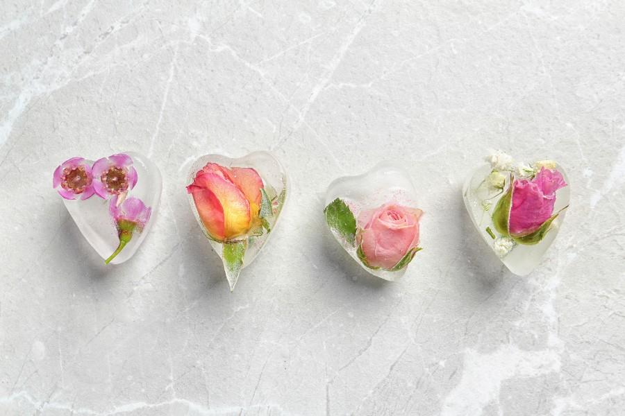 crioconservazione ovociti - egg freezing - concept con fiori ghiacciati